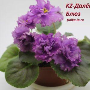 KZ-Далёкий Блюз (Заикина)