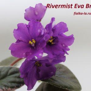 Rivermist Eva Britte